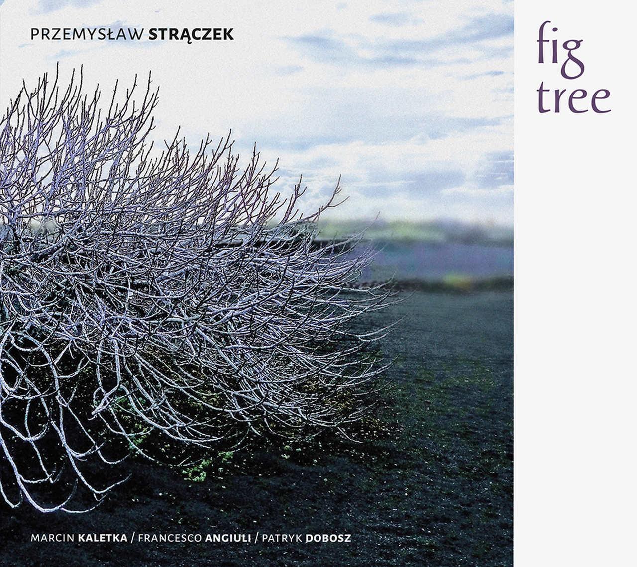 fig tree cover.jpg